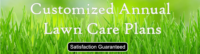 Lawn Care Plans from Indy Cutters Lawn Care