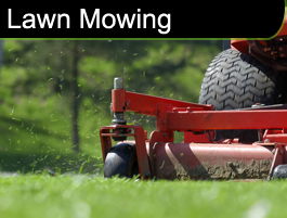 Lawn Mowing from Indy Cutters Lawn Care Inc